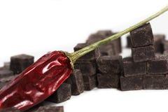 Peperoncino rosso del cioccolato Fotografie Stock Libere da Diritti