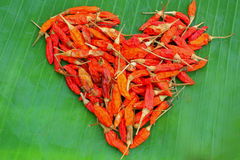 Peperoncino rosso del cuore Fotografia Stock Libera da Diritti