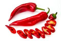 Peperoncino rosso del pepe isolato Immagini Stock