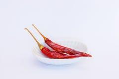 Peperoncino rosso della tazza fotografia stock