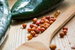 Peperoncino rosso di Chiltepin e pepe secchi del poblano Immagini Stock