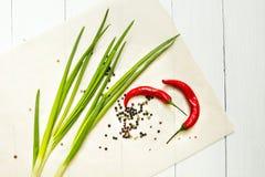 Peperoncino rosso e cipolla verde con le spezie su un fondo di legno bianco, vista superiore immagine stock libera da diritti