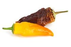 Peperoncino rosso giallo Immagine Stock