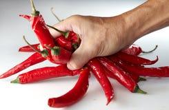 Peperoncino rosso grabing della mano Fotografia Stock