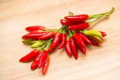 Peperoncino rosso molto caldo caldo calabrese del pepe fotografia stock libera da diritti