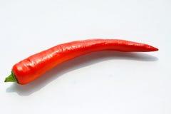 Peperoncino rosso rosso Fotografia Stock Libera da Diritti