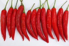 Peperoncino rosso rosso Immagine Stock Libera da Diritti