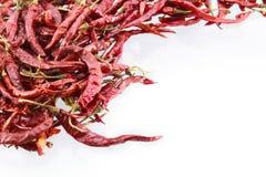 Peperoncino rosso rosso asciutto su fondo bianco Fotografia Stock Libera da Diritti