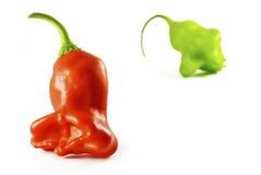 Peperoncino rosso rosso e verde - segnalatore acustico giamaicano Immagini Stock