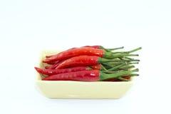 Peperoncino rosso rosso in piatto Immagini Stock Libere da Diritti