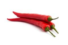 Peperoncino rosso rosso piccante Immagini Stock