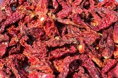 Peperoncino rosso seccato al sole Immagine Stock Libera da Diritti