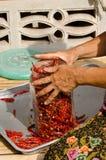 Peperoncino rosso seccato al sole Fotografie Stock Libere da Diritti