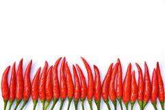 Peperoncino rosso su priorità bassa bianca Immagine Stock