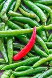 peperoncino rosso verde Fotografie Stock Libere da Diritti