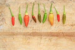 Peperoncino rosso verde e marrone rosso Fotografia Stock