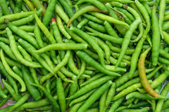 Peperoncino rosso verde misto per alimento Fotografie Stock