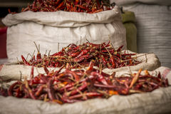 Peperone ad un mercato locale Fotografie Stock