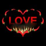 Peperone della carta del biglietto di S. Valentino in fuoco Fotografia Stock Libera da Diritti