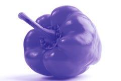 Peperone dolce blu Immagine Stock
