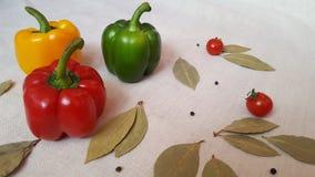 Peperone dolce dei colori differenti, dei pomodori e della foglia di alloro fotografie stock