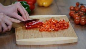 Peperone dolce di taglio Produrre tortiglia con il pollo ed il peperone dolce video d archivio