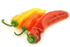 Peperone dolce giallo ed arancione di colore rosso, Fotografia Stock Libera da Diritti