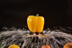 Peperone dolce giallo su fondo nero Fotografia Stock