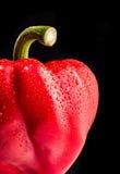 Peperone dolce rosso Immagini Stock
