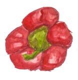 Peperone dolce rosso Fotografia Stock Libera da Diritti