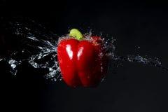 Peperone dolce rosso con la spruzzata dell'acqua sul nero Immagini Stock Libere da Diritti