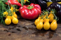 Peperone dolce rosso e porpora e pomodori gialli Fotografia Stock