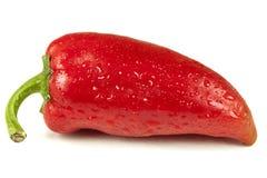 Peperone dolce rosso fresco Fotografie Stock