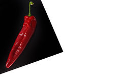 Peperone dolce rosso sullo strato nero isolato su bianco Fotografie Stock Libere da Diritti