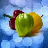 Peperone dolce verde - quadrato - strutturato Fotografia Stock