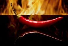 Peperone su un fondo nero nella vista laterale del fuoco immagine stock
