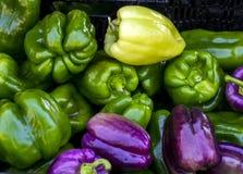 Peperoni al mercato degli agricoltori Immagini Stock
