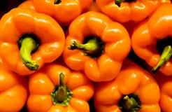 Peperoni arancioni Fotografia Stock