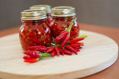 Peperoni calabresi in peperoncino rosso molto caldo caldo del pepe dell'olio immagine stock