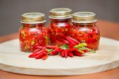 Peperoni calabresi in peperoncino rosso molto caldo caldo del pepe dell'olio immagini stock