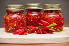 Peperoni calabresi in peperoncino rosso molto caldo caldo del pepe dell'olio immagine stock libera da diritti