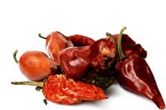 Peperoni caldi Immagine Stock