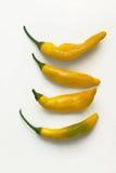 Peperoni caldi del limone Fotografie Stock