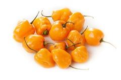 Peperoni caldi e piccanti organici del Habanero Fotografie Stock
