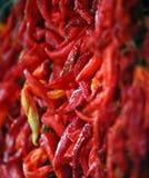 Peperoni caldi freschi Fotografia Stock