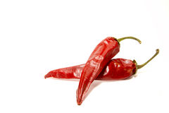Peperoni caldi secchi Immagine Stock