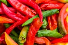 Peperoni colorati Immagine Stock