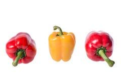 Peperoni colorati Fotografia Stock