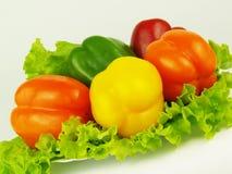 Peperoni colorati con insalata verde Fotografie Stock