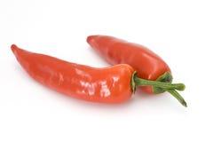 peperoni czerwień Obraz Stock